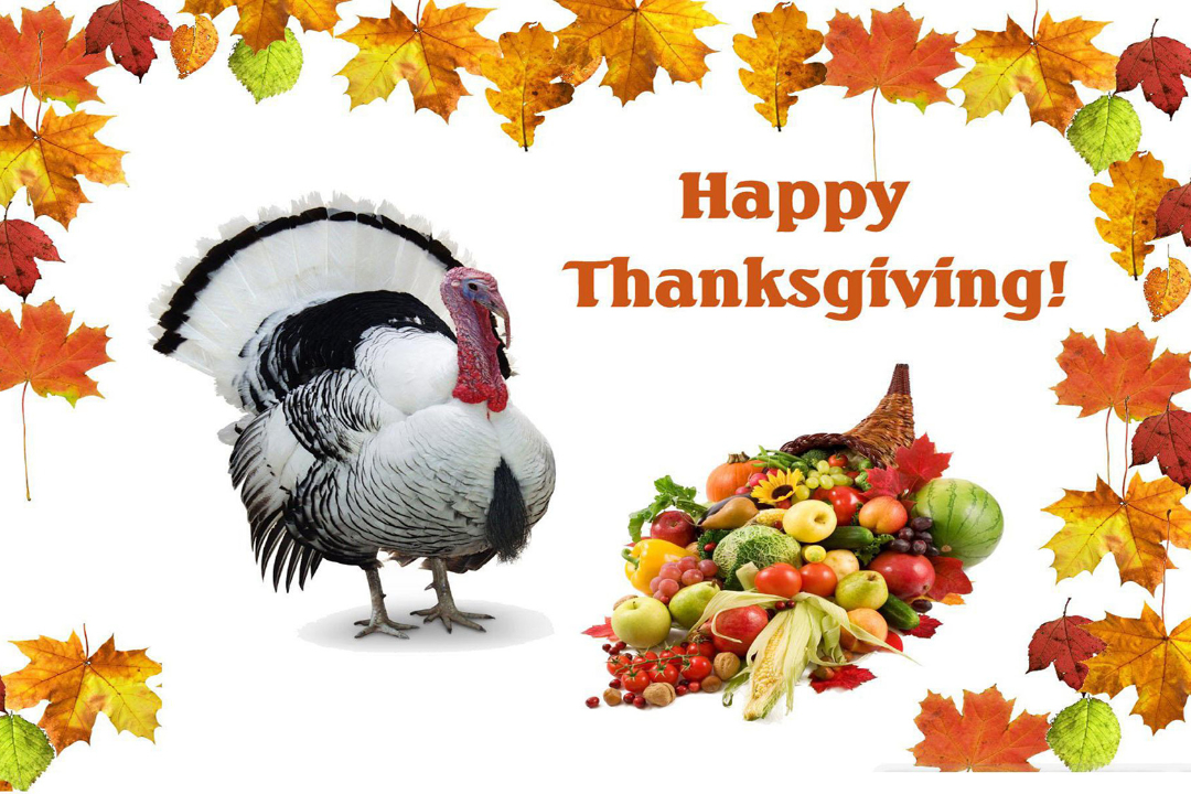 Happy Thanksgiving from WP Handicraft